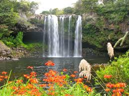 whangerai falls